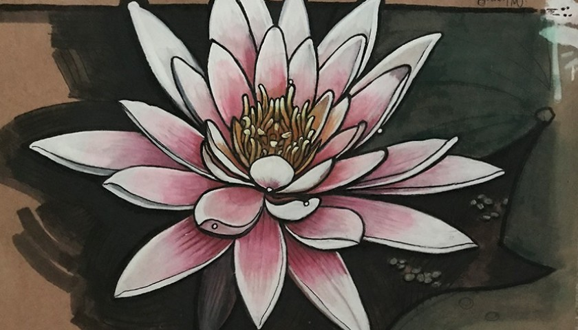 Study Of Lotus Flower Koh Chang Thailand By Bradley Morgan