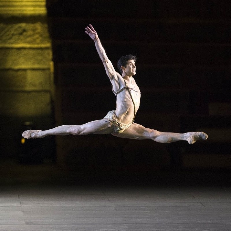 VIP Experience at the Roberto Bolle and Friends Gala