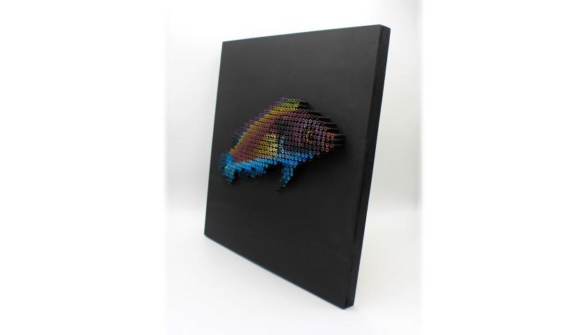 """""""Esotic Fish"""" by Alessandro Padovan"""