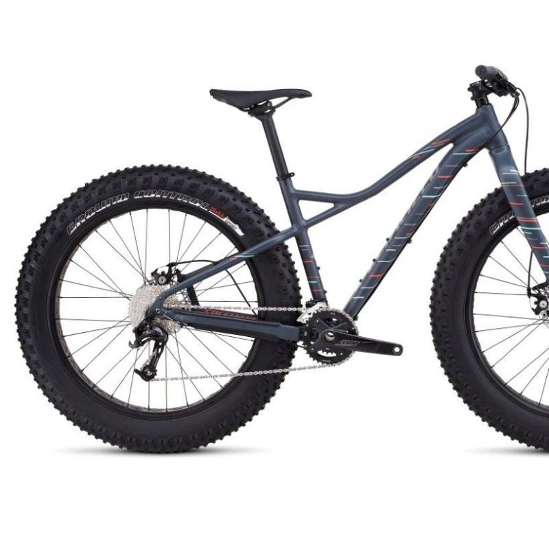 """""""Hellga"""" Specialized bike"""