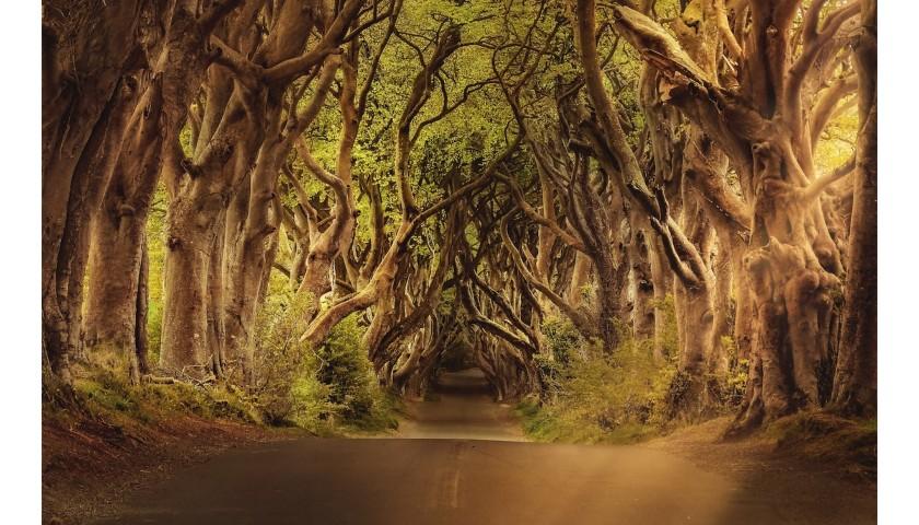 Game of Thrones Journey