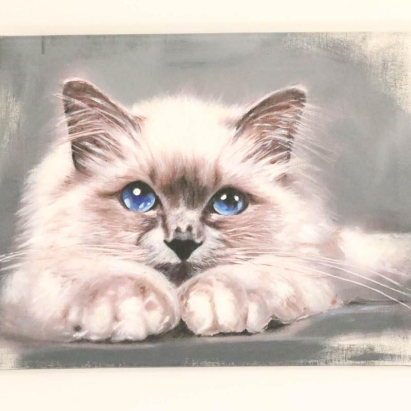 """Cat"" by Antonello Arena"