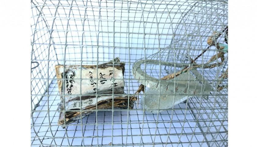 """""""Ex voto: Che l'informazione possa essere libera"""" by Patrizia Grieco"""