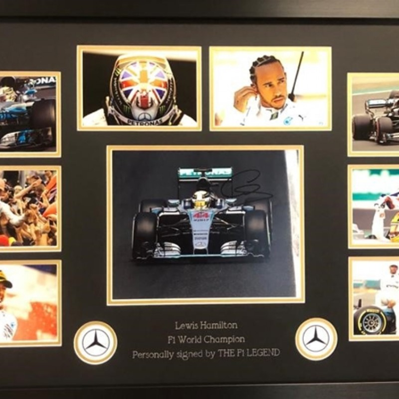 F1 Display Signed By Lewis Hamilton