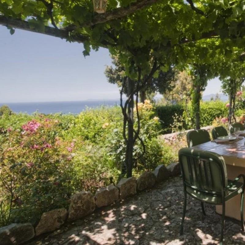 Stay at the Beautiful Villa Lividonia in Tuscany