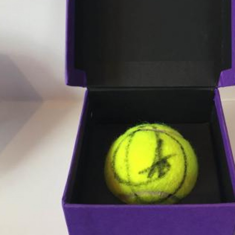 Tennis ball used in the Wimbledon 2014 final signed by Djokovic