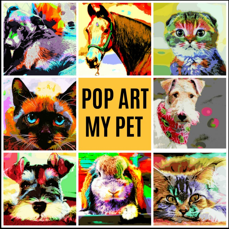 Pet Art With POP ART MY PET.co.uk