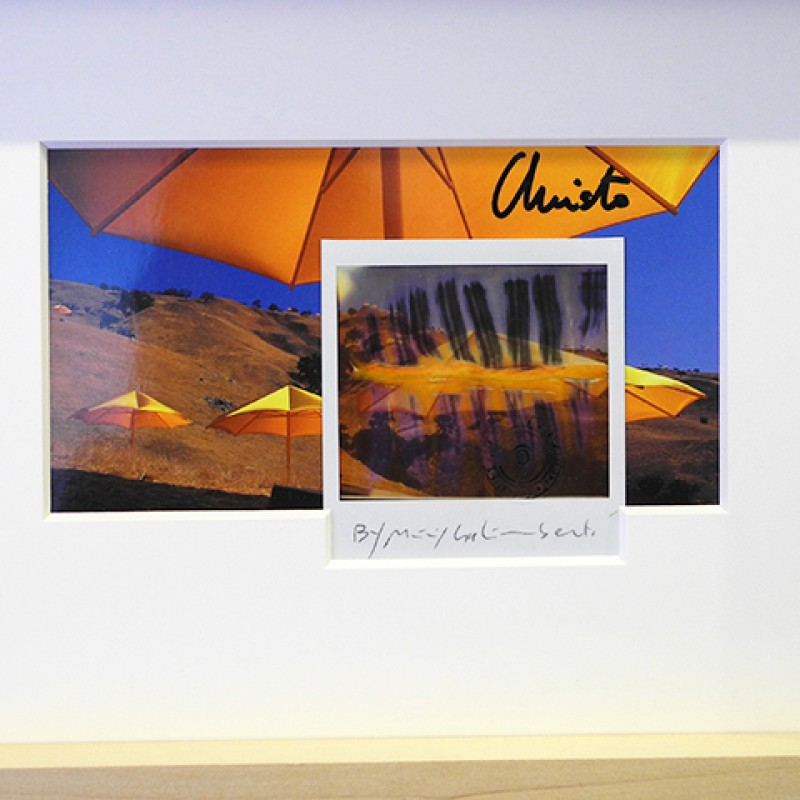 """Christo Ready- Made Affezione n.550"" by Christo and Maurizio Galimberti"