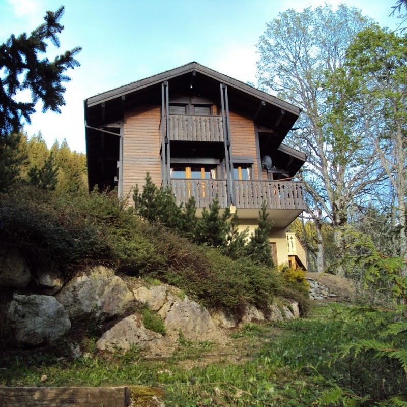 One Week in an Alpine Chalet in Les Gets, France for 6/8