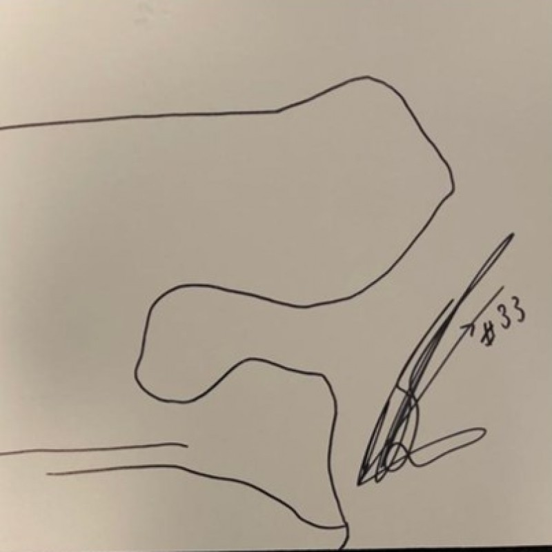 Signed Drawing of the Red Bull Ring Circuit - Austria by Brad Binder