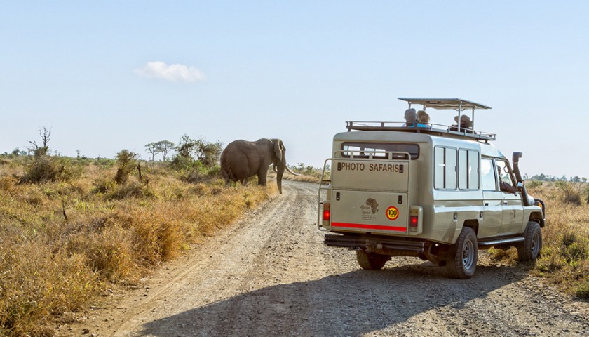 6 Night Stay at a Luxury Safari Lodge with 6 Game Drives in South Africa