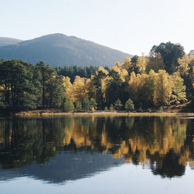 Cairngorms National Park Experience for Two