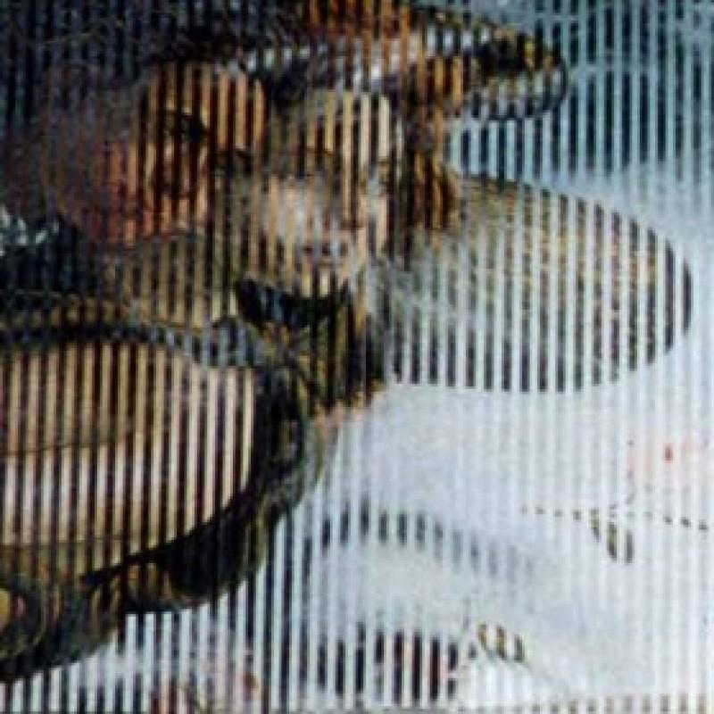 """""""Parabola. Venere di Botticelli e Marilyn"""" work, Malipiero"""