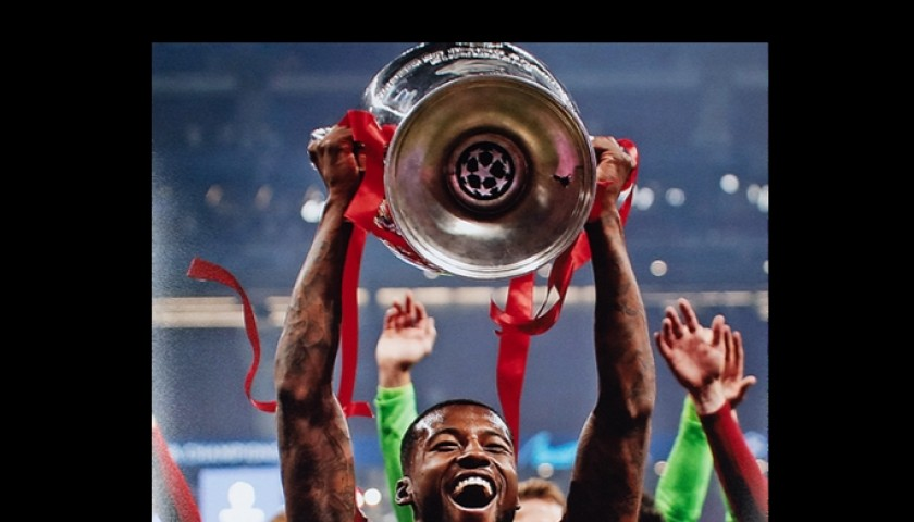 Georginio Wijnaldum – Signed Champions League Winner Photo