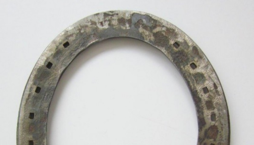 Horseshoe worn by Varenne - the greatest trotter of all time