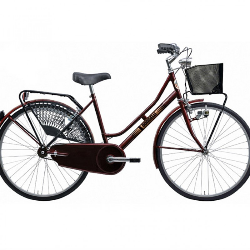 Doniselli Women's Bike