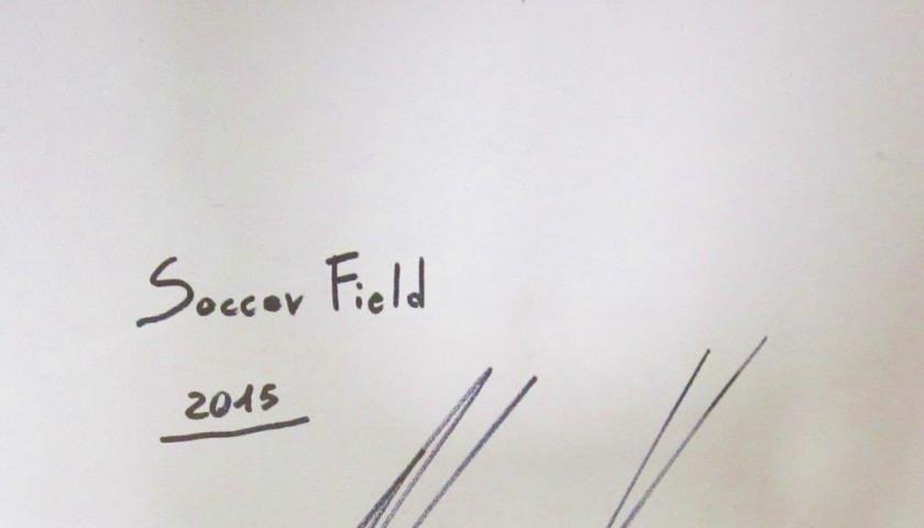 Paolo Ceribelli's 'Soccer Field' Piece