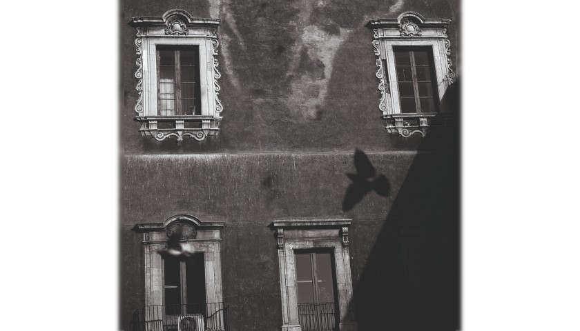 """Shadow"" by Heinz Schattner"