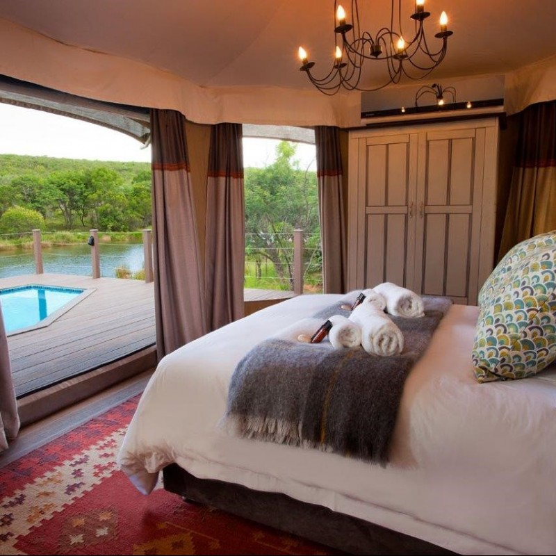 South Africa 'Glamping' Safari
