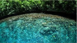 103-charitysub-coralreefs_the-terramar-project-thumb