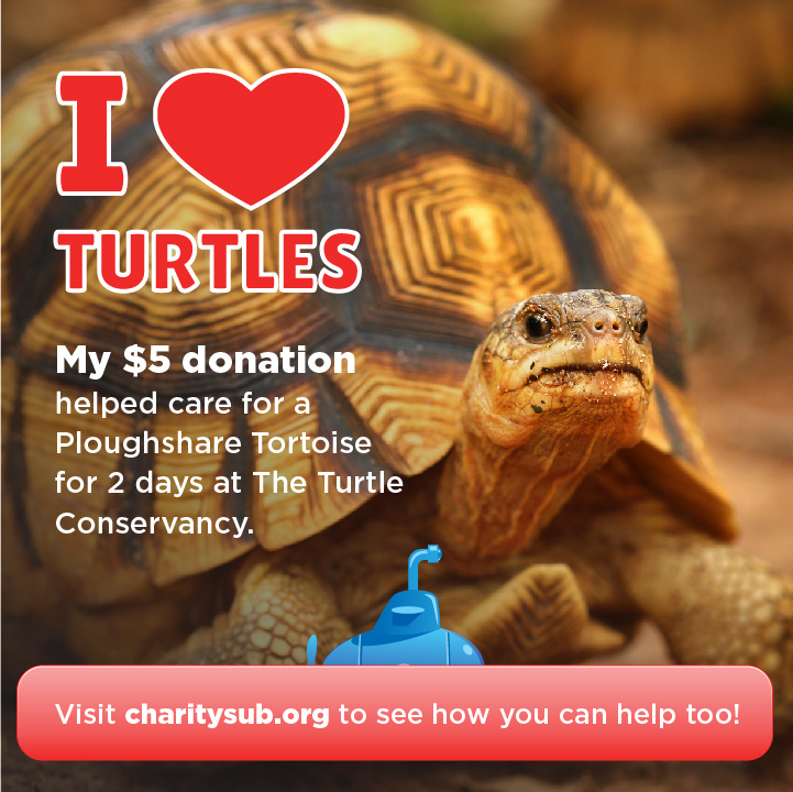 Turtle Conservancy