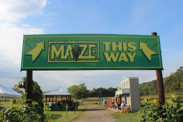Image: Blowing Springs Farm featuring Rock City's Enchanted MAiZE