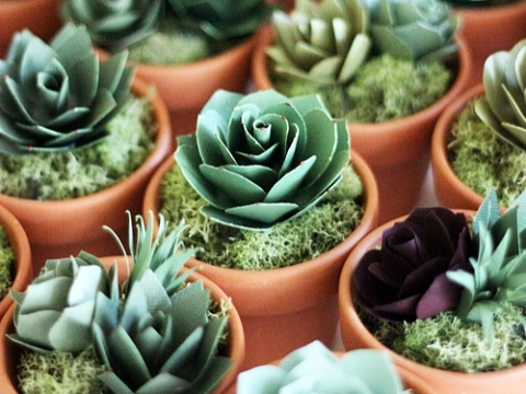 "Image: The Chattery Presents ""Making a Paper Succulent Garden"""
