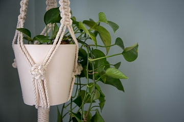 "Image: The Chattery Presents ""Beginner Macrame: Plant Hanger"""