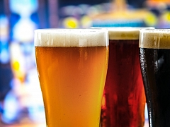 """The Chattery Presents """"Homebrewing 101: Make Your Own Beer"""""""