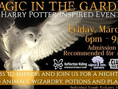 Magic In The Garden: A Harry Potter Inspired Event