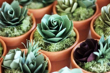 Image: The Chattery Presents: Making a Paper Succulent Garden