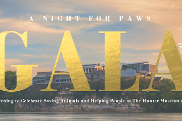 Image: A Night for Paws Gala