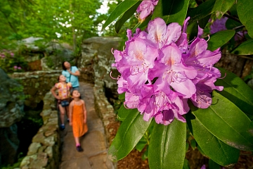 Image: Rock City's Southern Blooms Festival