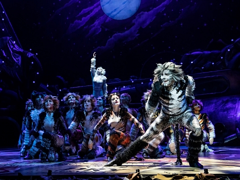 Image: Cats: The Musical