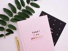 Journaling 101: Venting & Gratitude