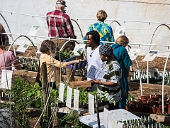 Spring Plant Sale Final Day