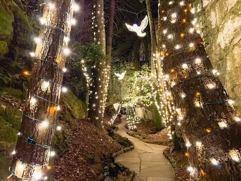 Image: Rock City's Enchanted Garden of Lights