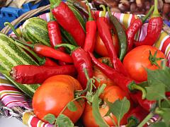 Vegetable Gardening 101 – Online Class