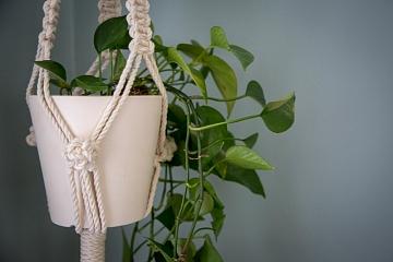 Image: Beginner Macrame: Plant Hanger – IN-PERSON CLASS