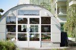 Business   organic burger foodhouse