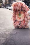 Fur on Road