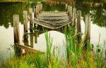 Wood Bridge On River