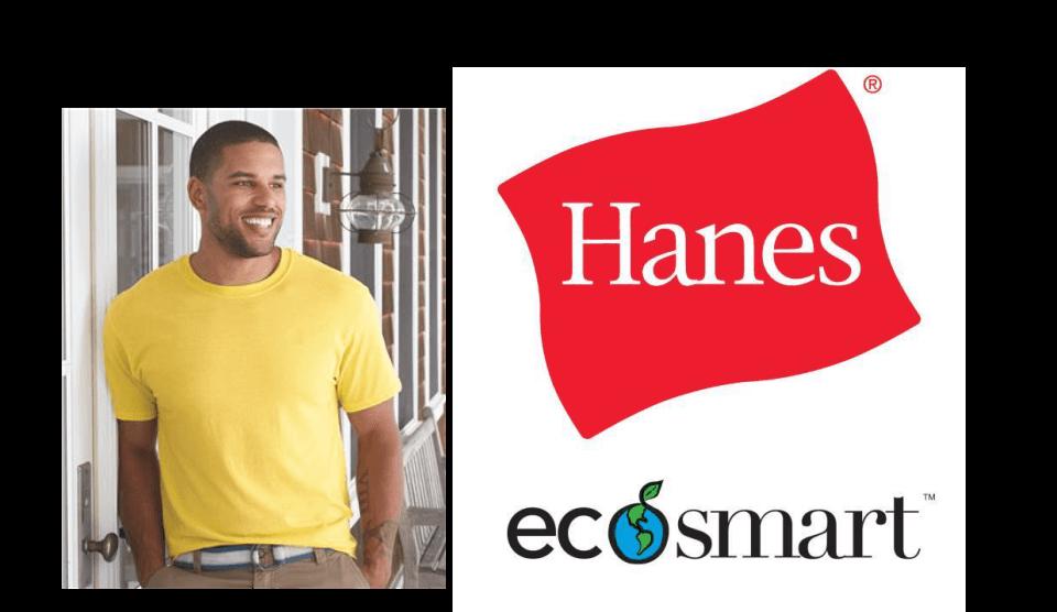Hanes EcoSmart ComfortSoft Tee Shirts