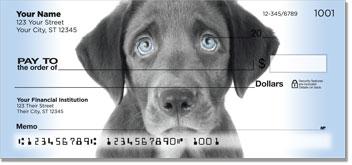 Black Lab Puppydog Eyes Checks