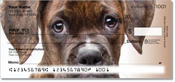 Boxer Puppy Checks