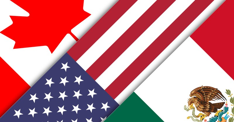 NAFTA TN Visa Application Management Consultantant