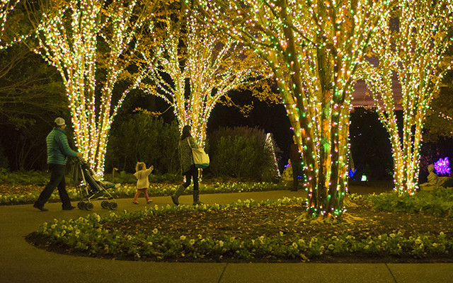 delight in the joy of the holiday season during holiday lights at cheekwood nashvilles favorite tradition returns with one million lights illuminating our