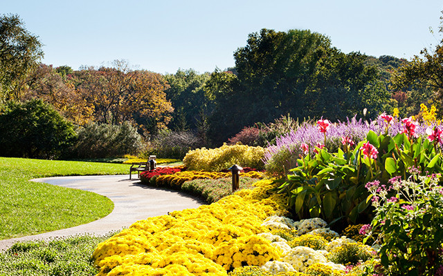 An Allée Of Crape Myrtles Leads Into This Garden Where Sweeping Curves Of  Colorful Flowers Border A Sloping Lawn And Give A View Of The Distant Hills.