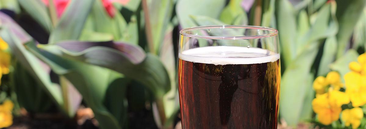 Cheekwood Beer Garden