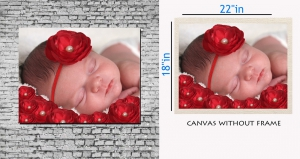 meSleep Canvas painting without frame - Sleeping baby art pc-11-038